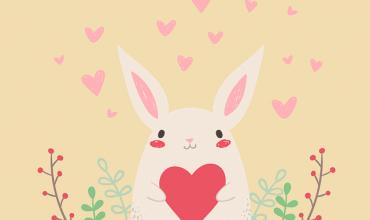 Como cuidar conejos